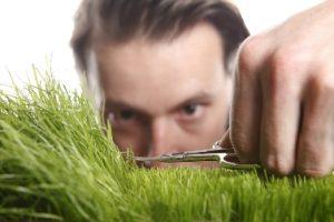 Lawn Care Advuce