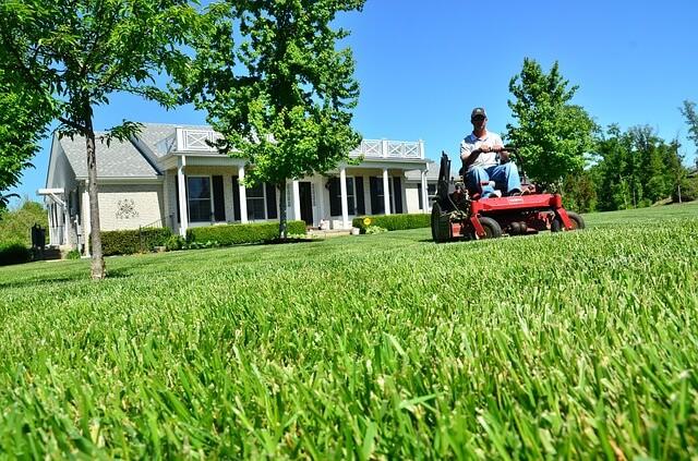 Groomsmen + Lawn Mower
